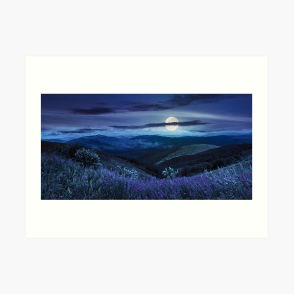 wild flowers on the mountain top at night Art Print
