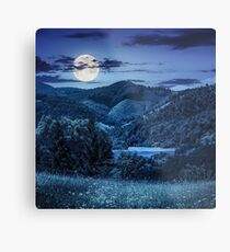 pine trees near meadow in mountains at night Metal Print