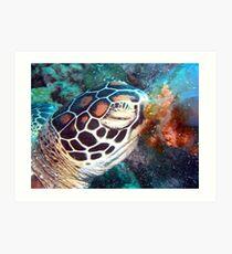 Turtle Jelly Art Print