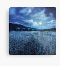 meadow with high grass in mountains at night Metal Print