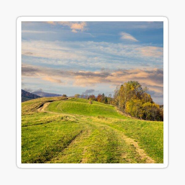 path on hillside meadow in mountain Sticker
