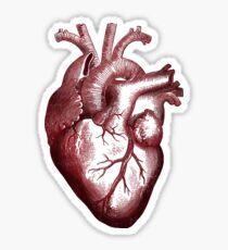 big heart shirt. Sticker
