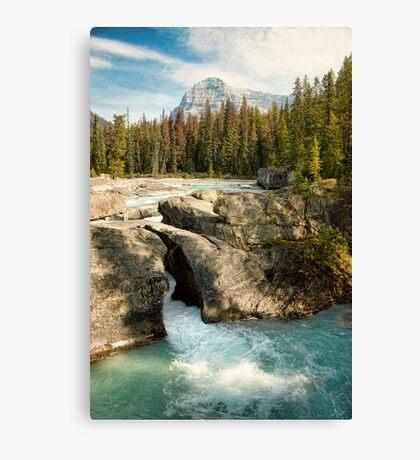 Natural Bridge, Kicking Horse River Canvas Print
