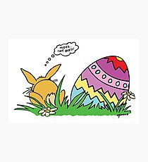 The Easter Bunny Photographic Print