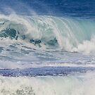 Pacific Wave by Elizabeth  Lilja