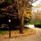 gaslamp, Atlanta, GA by rmenaker