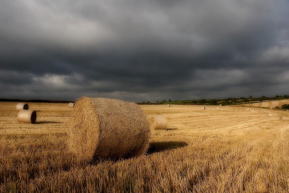 Stormy Bales by JayteaUK