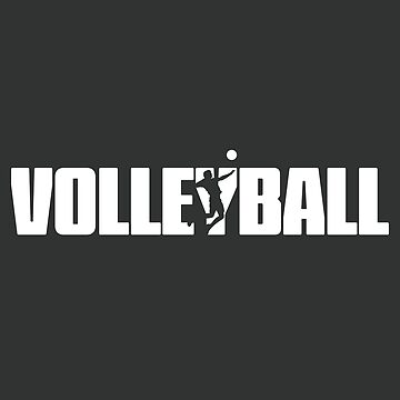 Volleyball for Volleyball Player by teedad