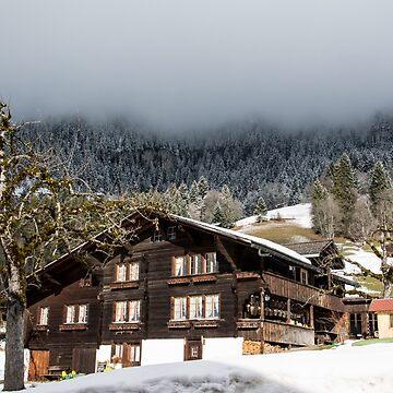 House in best mountain by rosiczka