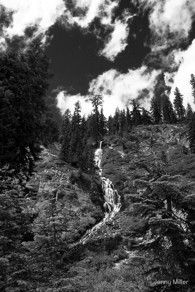 Videa Falls by Jenny Miller