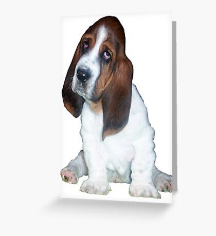 Barney the Bassett Hound  Greeting Card