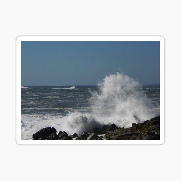 Wild Waves Sticker