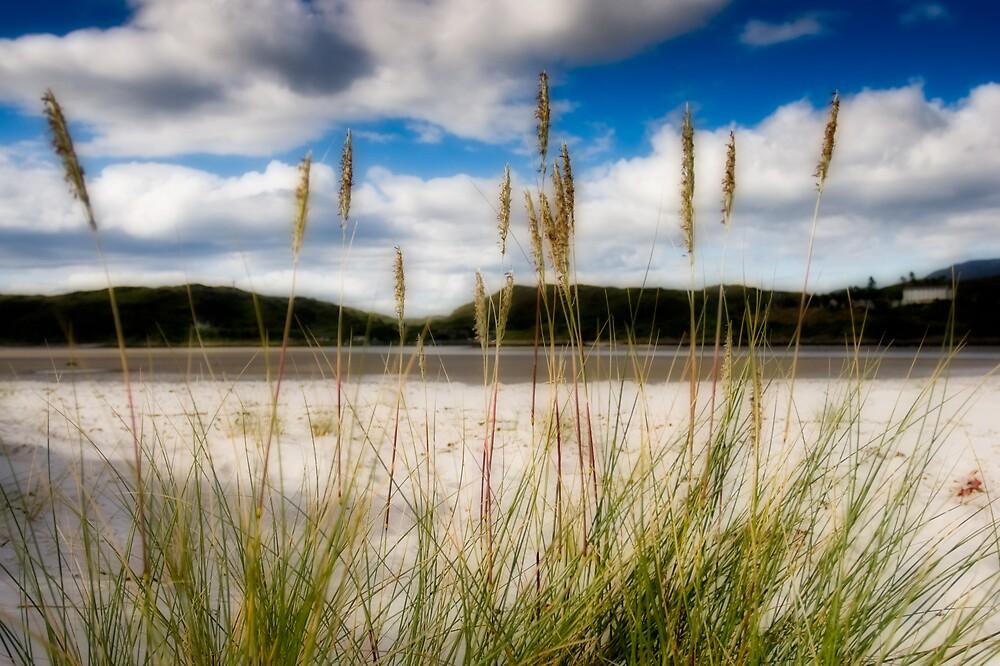 Morar Estuary by JayteaUK