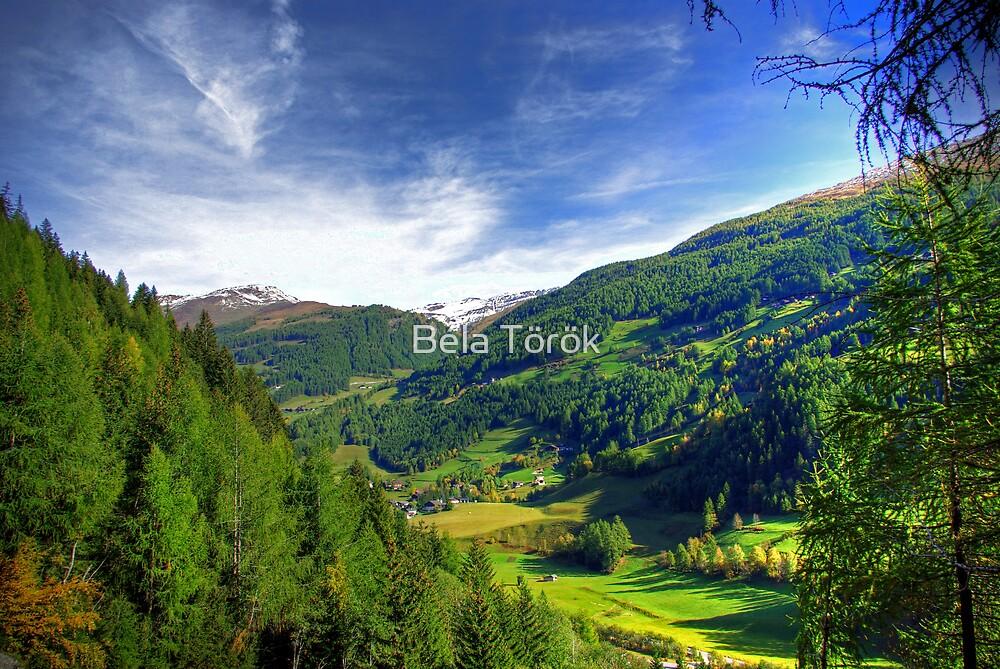Austrian landscape by Béla Török