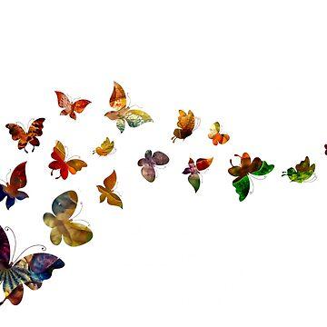 Butterflies by MrColgate