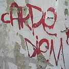 2011 Calendar Philosophy Graffiti - slogan graffiti from around the world by sevenbreaths