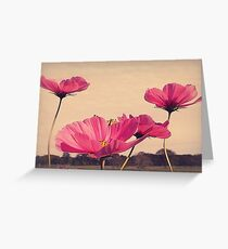 I Dreamt Last Night...of Flowers Greeting Card