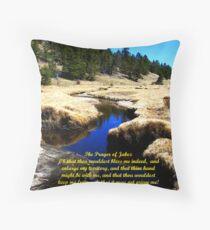 The Prayer of Jabez Throw Pillow
