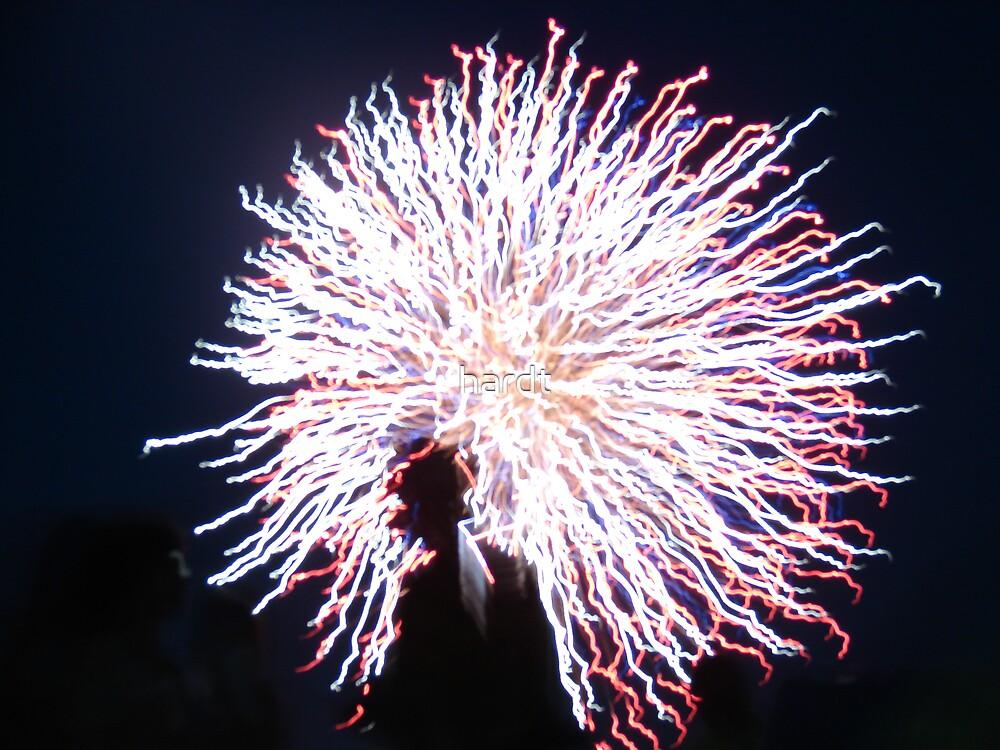 fireworks by hardt