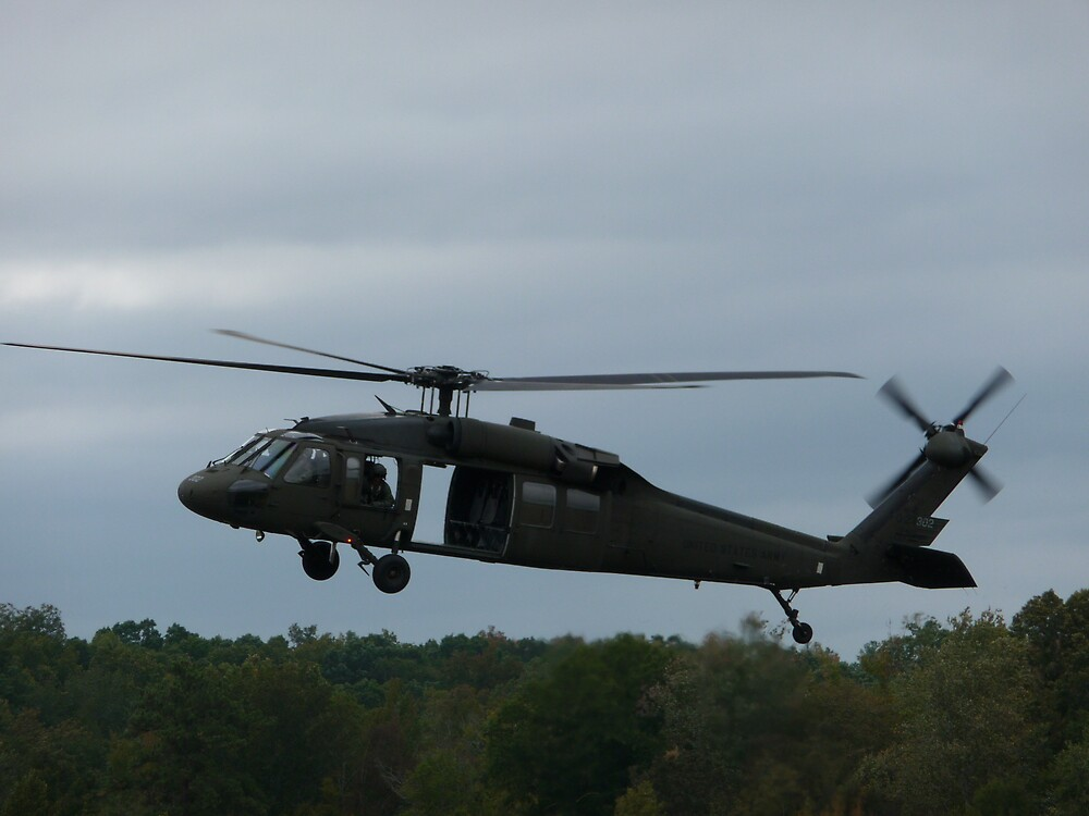 Black Hawk by abryant