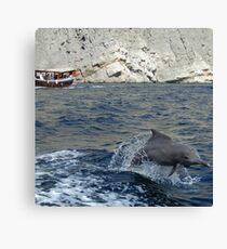 Dolphin, Khor Sham Canvas Print