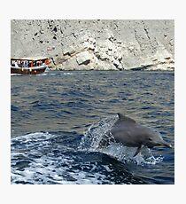 Dolphin, Khor Sham Photographic Print