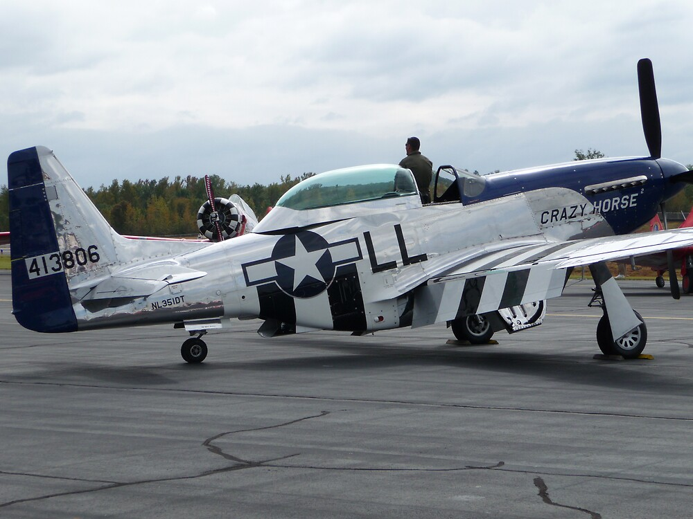 P-51 Mustang by abryant