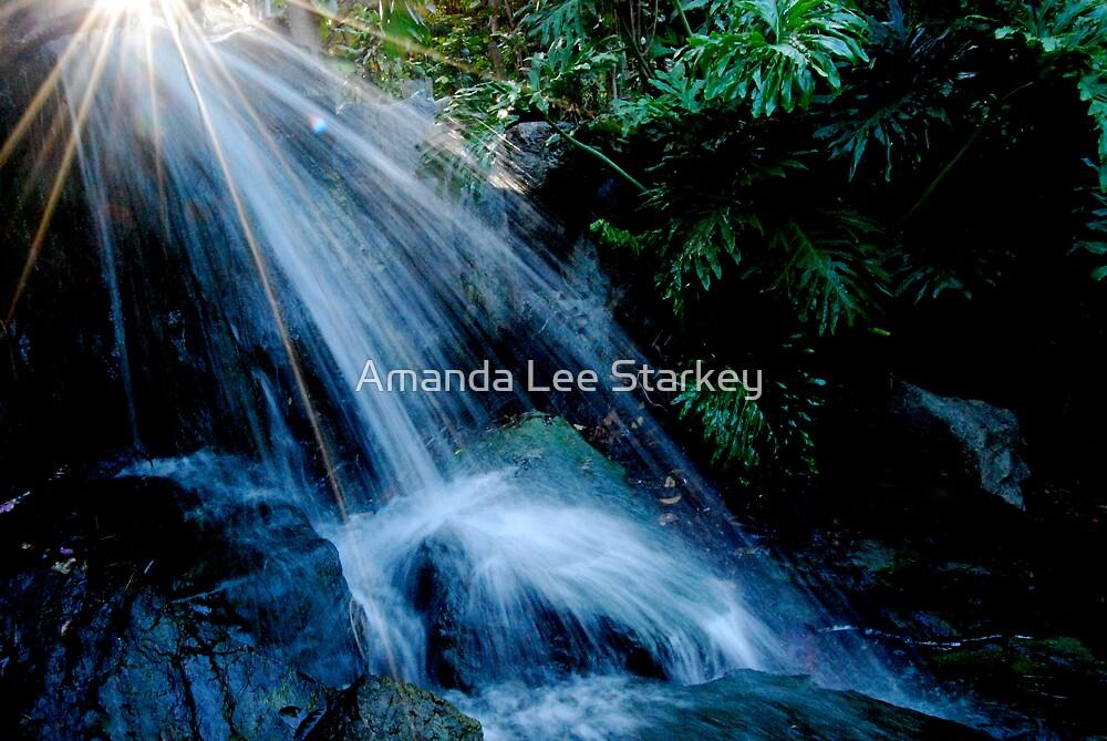 Lights from Heaven by Amanda Lee Starkey