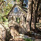 Hidden Cottage, Grassy, King Island, Tasmania by Pauline Tims