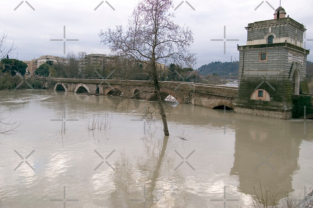 River in flood by monica palermo