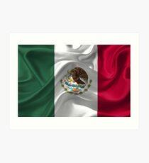 Waving fabic national flag of Mexico Art Print