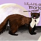 Why the stone marten cross the road? by belettelepink