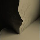 soft corner by Nikolay Semyonov