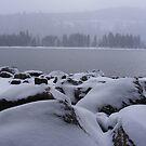 Snowy Rocks Along Donner's Shoreline by NancyC
