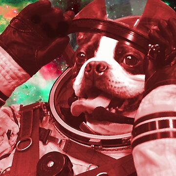 Space Pug  by GeorgeSears