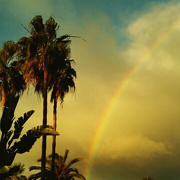 Palm trees and rainbow by p-insolito