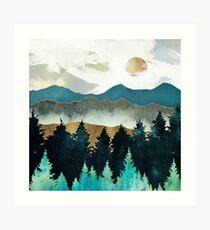 Lámina artística Niebla del bosque