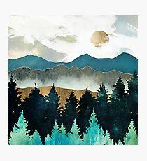 Forest Mist Photographic Print