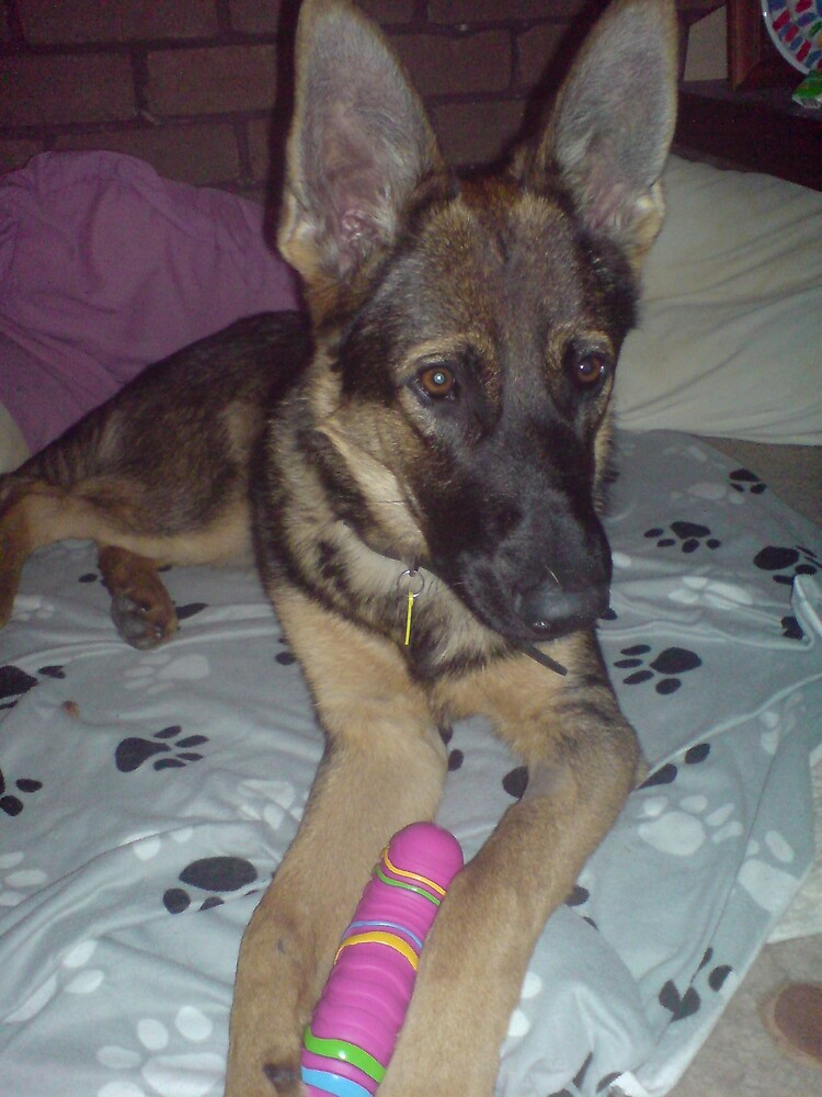 Why did you get me a pink toy when I'm a Boy! by kdesignz