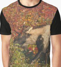 Piebald Bull Moose in Maine Graphic T-Shirt