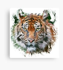 Royal Tiger Canvas Print