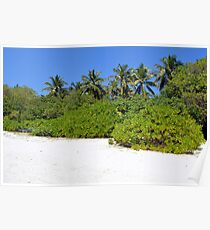 Exotic vegetation on an island in Maldives Poster
