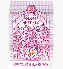 Glass Animals Poster