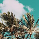 Palm Trees & Island Breeze by Leah Flores