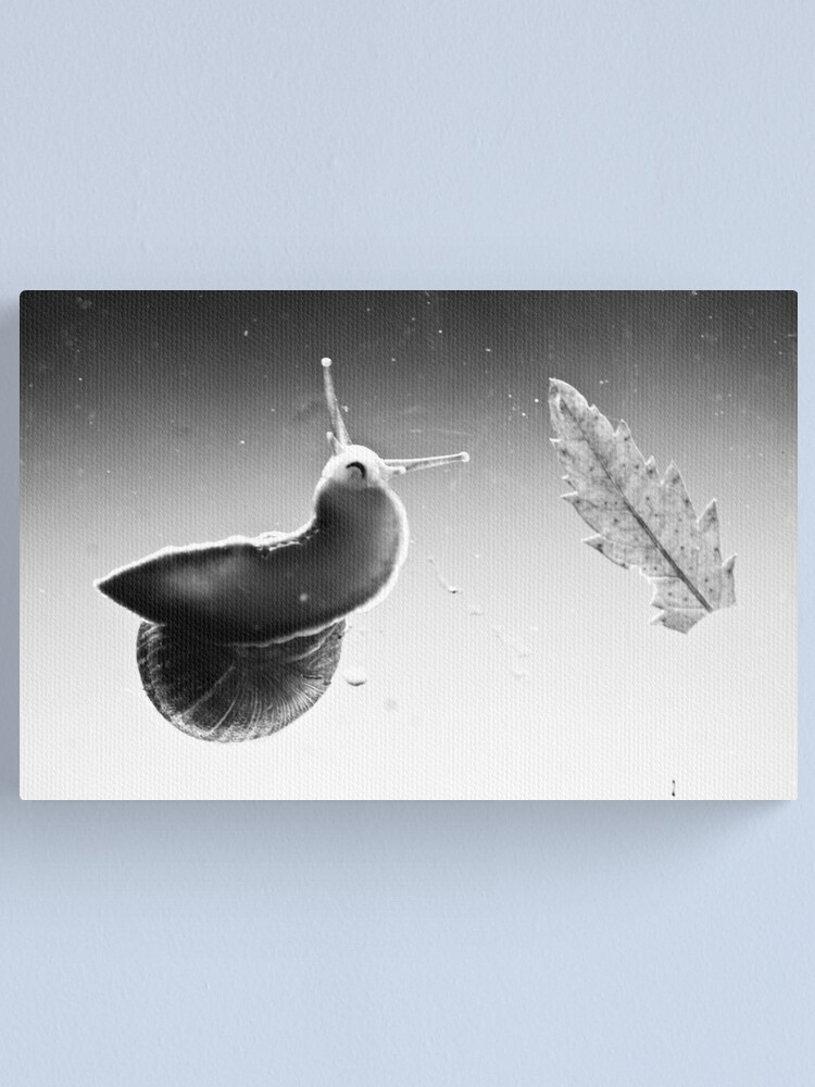 Alternate view of Mouth Canvas Print