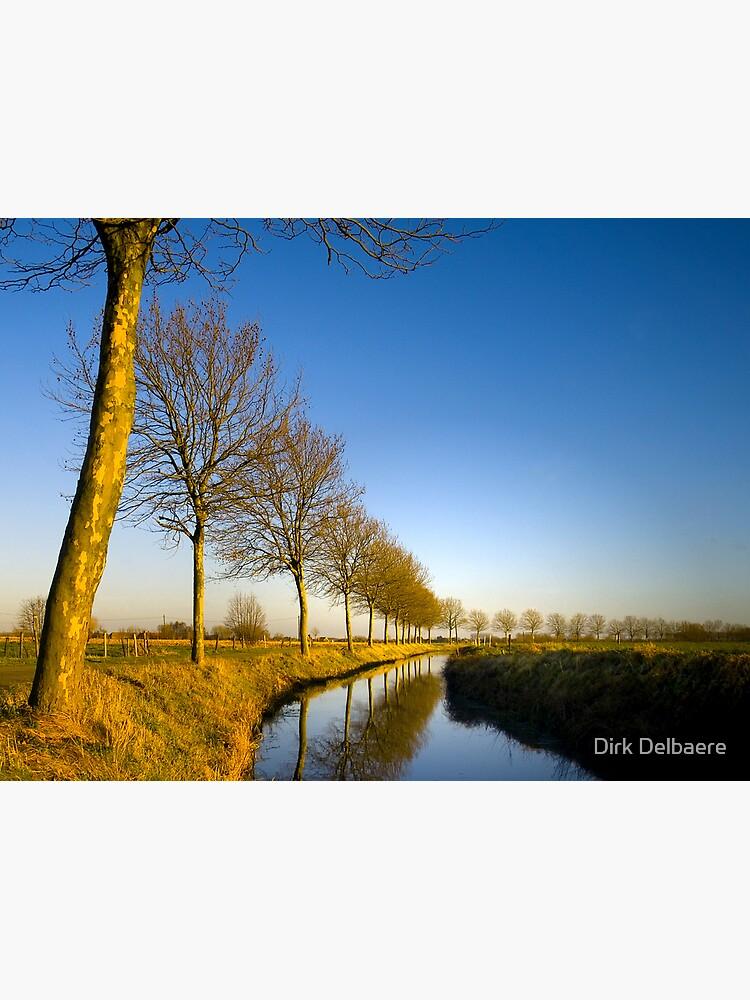 De Lieve, Lovendegem by Delbaere