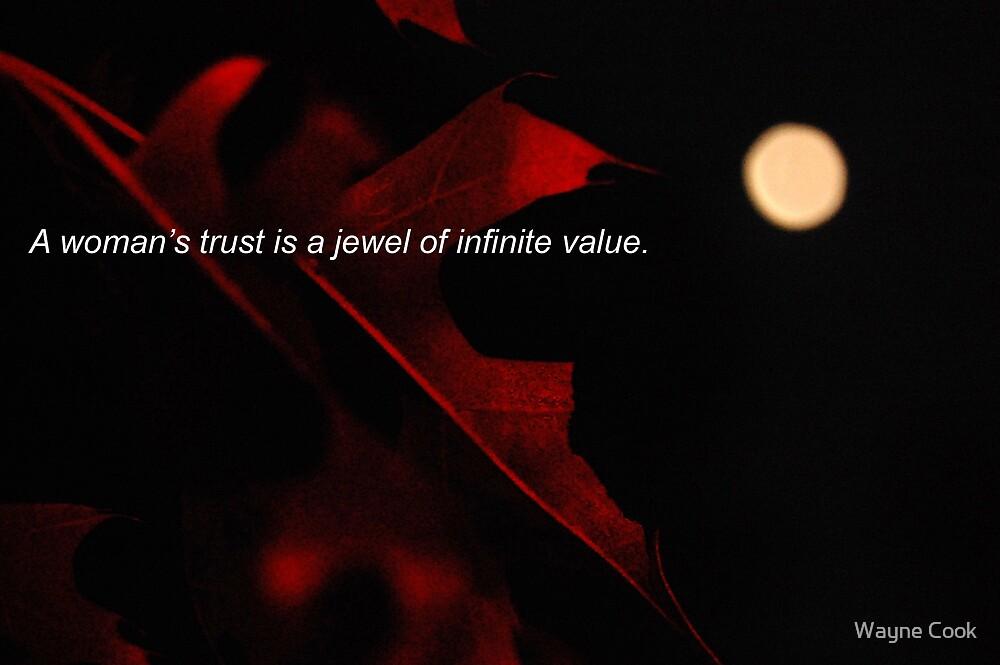 Trust by Wayne Cook