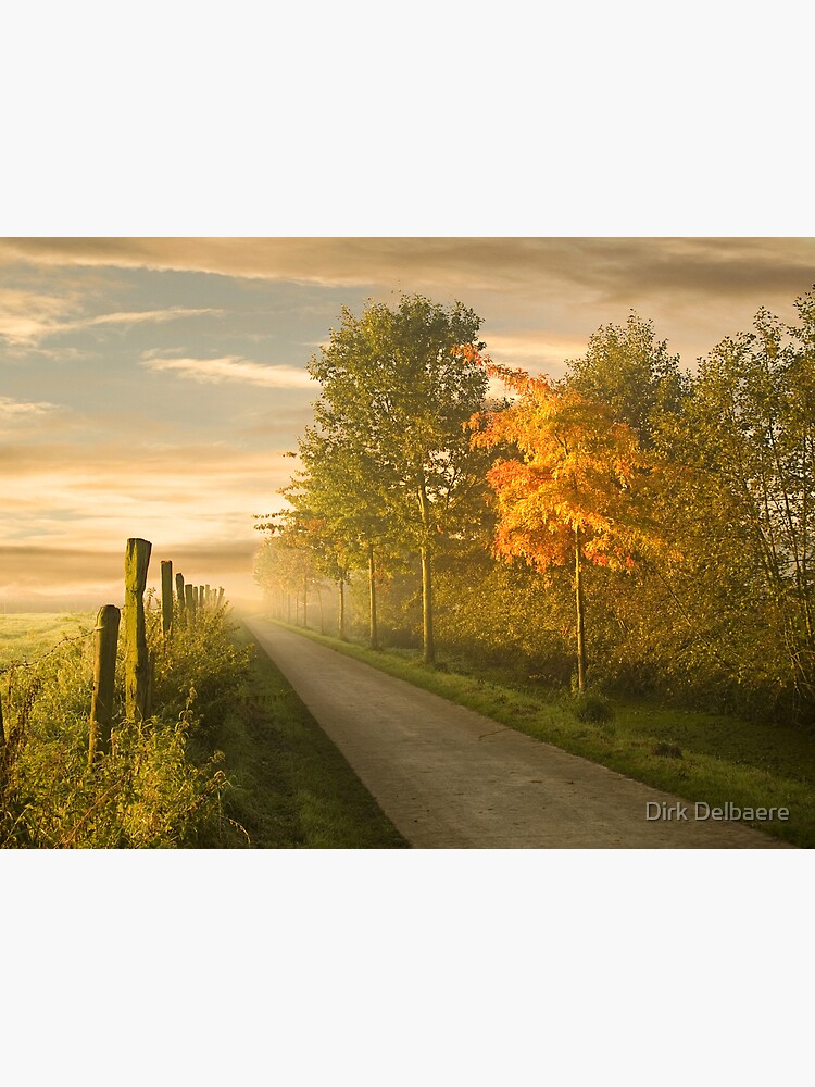 misty road by Delbaere