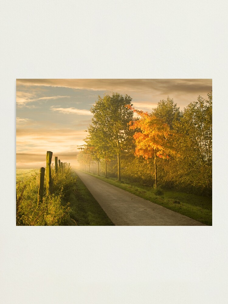 Alternate view of misty road Photographic Print