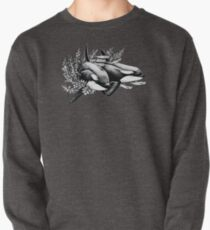 Orcas of Norway Pullover